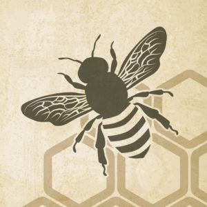 Beekeeping Information, Facts and Resource Center